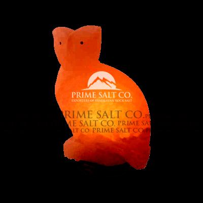 Himalayan Salt Owl Lamp