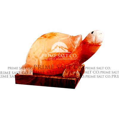 Himalayan Salt Turtle Lamp
